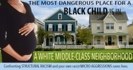 White Middle-Class Neighborhood; Digital Image by Amanda K Gross